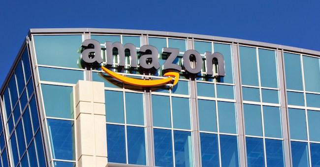 Energie rinnovabili: Amazon finanzia un gigantesco parco solare in in Virginia