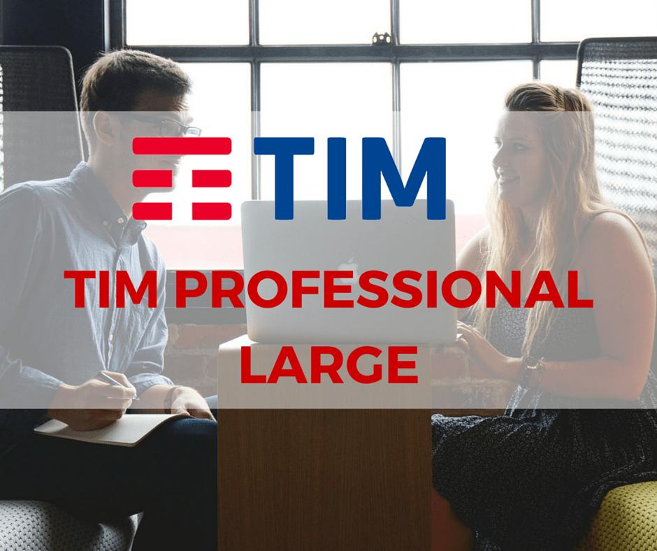 Tim Professional Large: il servizio mobile per i clienti business