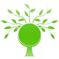Mercato energie rinnovabili: le aziende più green