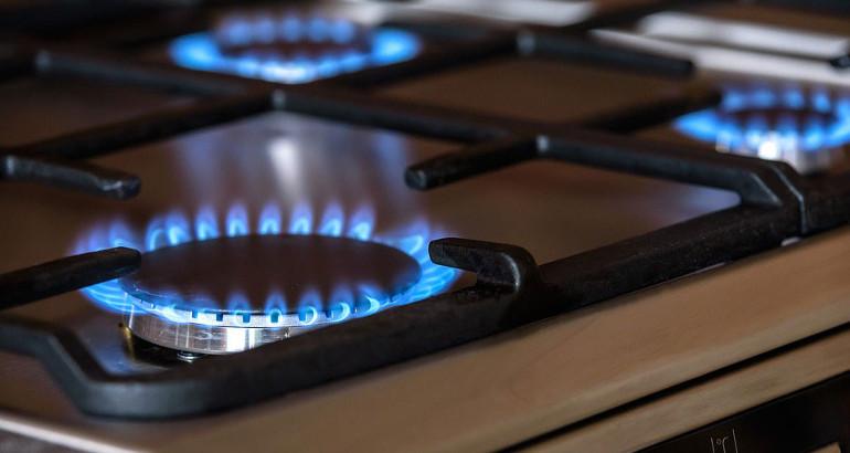 Componente sostitutiva materia prima gas