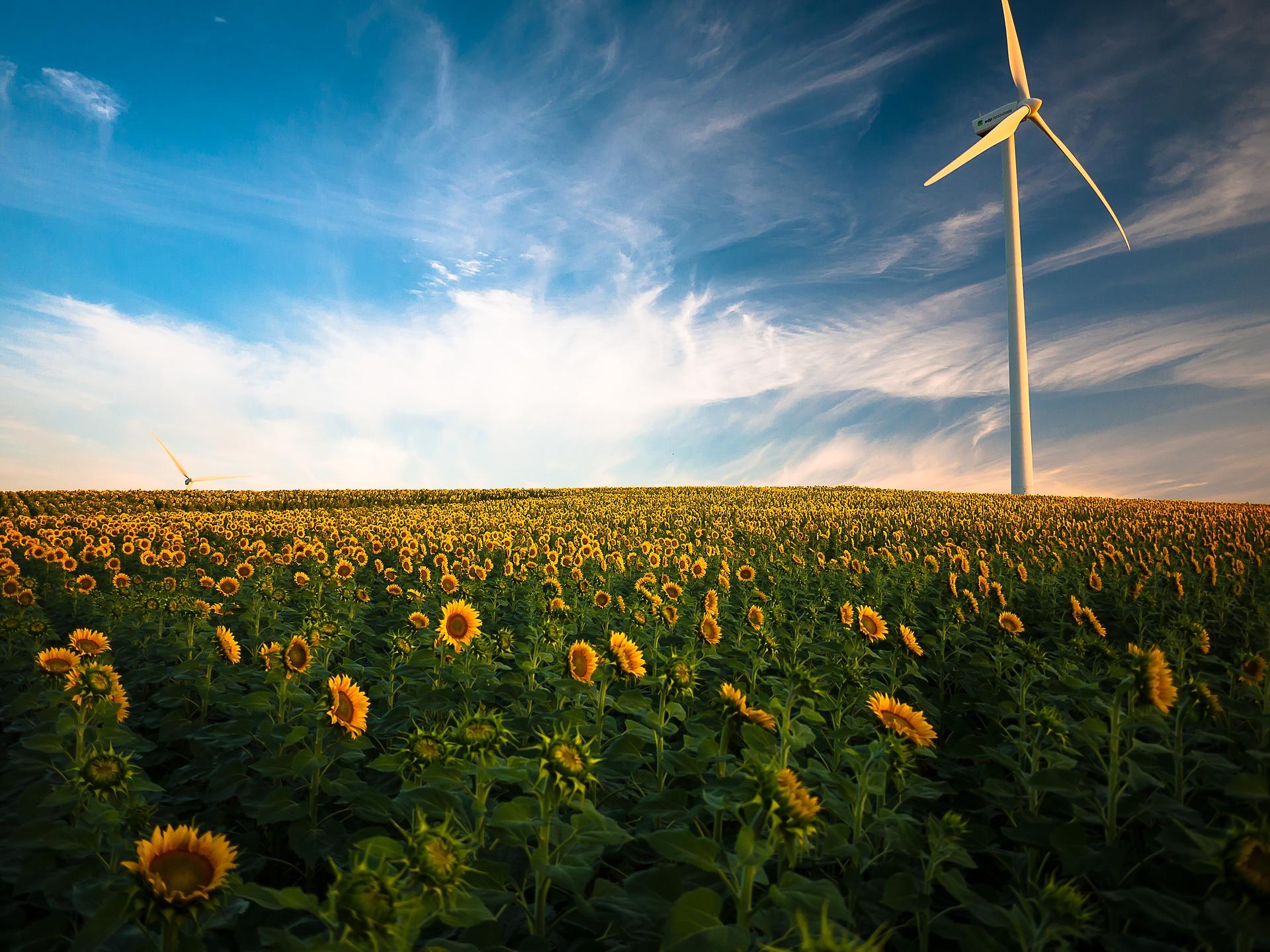 Mix energetico italiano: le fonti che utilizziamo per produrre energia